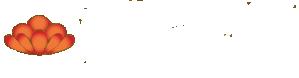 Plastická chirurgia a chirurgia ruky MUDr. Ján Švehlík Logo